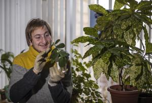 Сергей Кольцов больше всего на свете любит цветы.